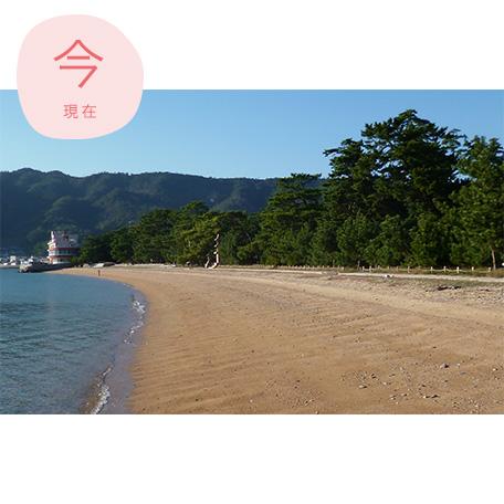桂浜全景(現在)