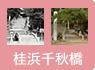 ⑦桂浜千秋橋